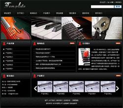 钢琴及电子钢琴有限公司