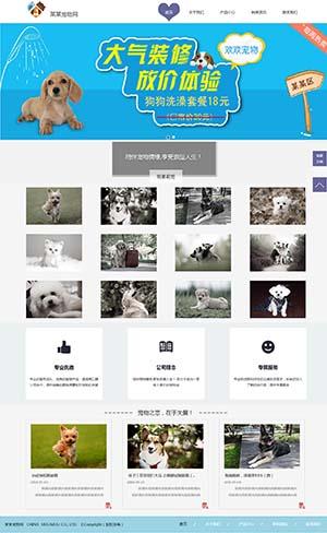 宠物网模板